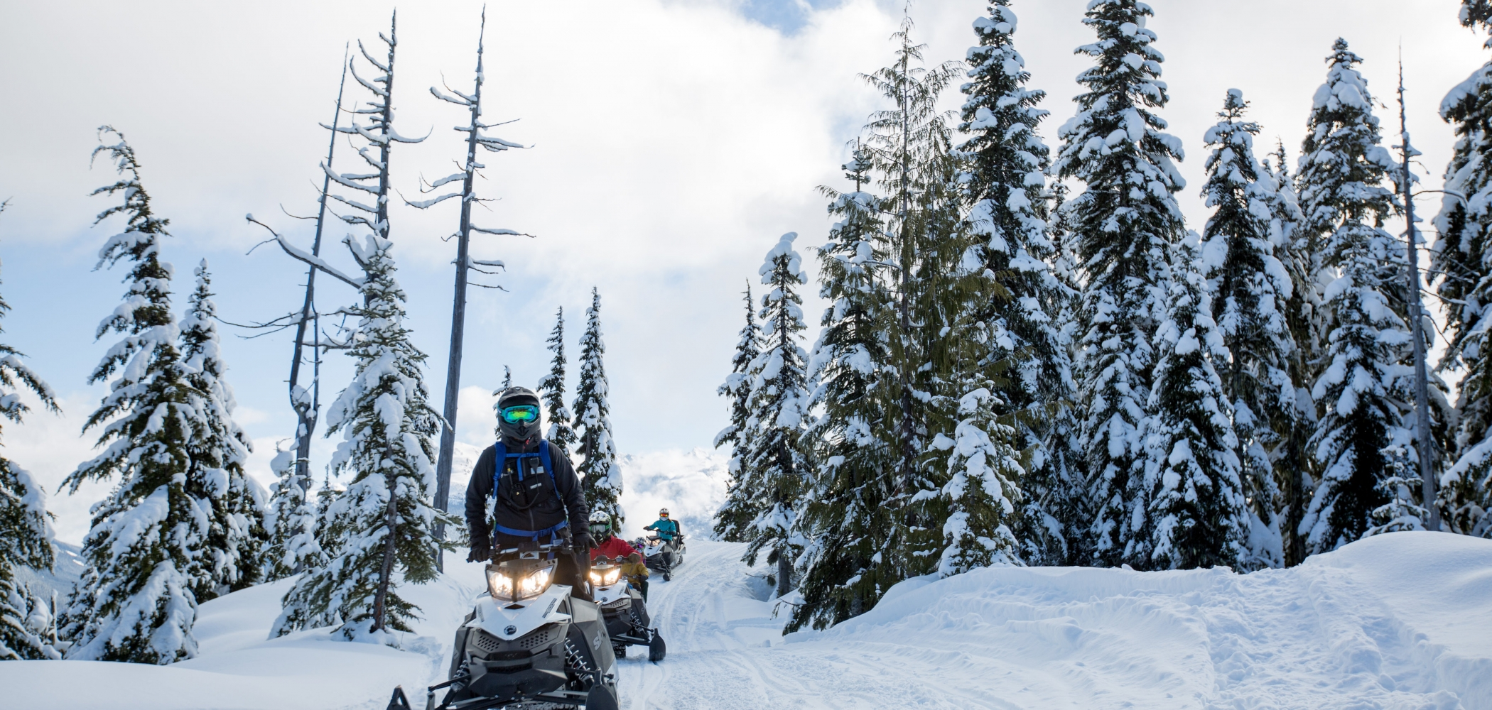 A person on a snowmobile going through the trees