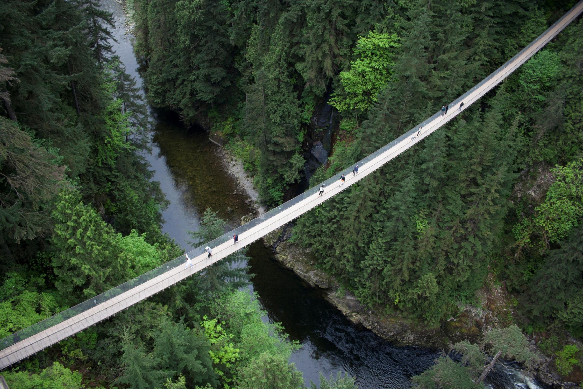 Capilano Suspension Bridge | Capilano Suspension Bridge