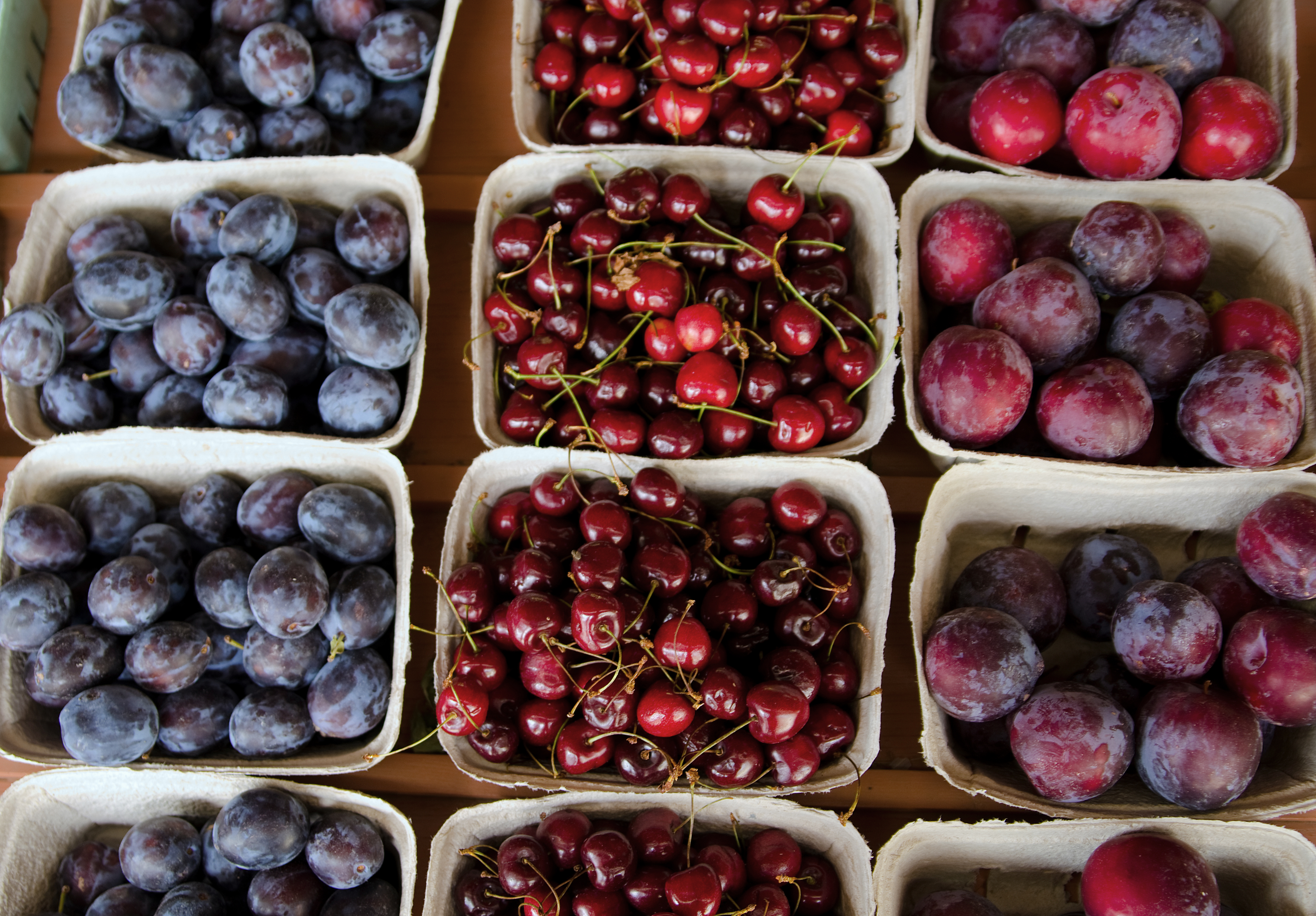 Bear's Fruit Stand in the Similkameen