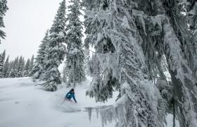 7 Tage Skifahren in British Columbia, Kanada7 Tage Skifahren in British Columbia, Kanada